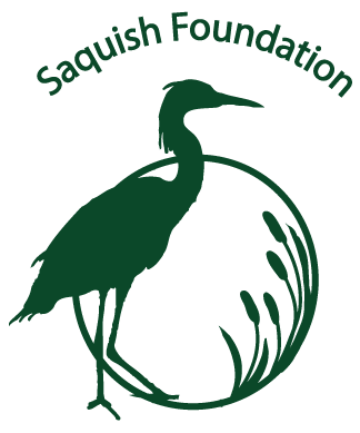 Saquish logo